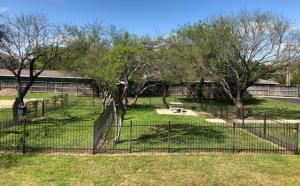 New Dog Park 2019 pic 1