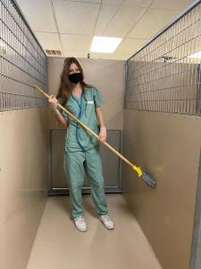 cleaning kennels res